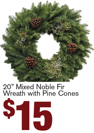 "20"" Mixed Noble Fir Wreath with Pine Cones $15"
