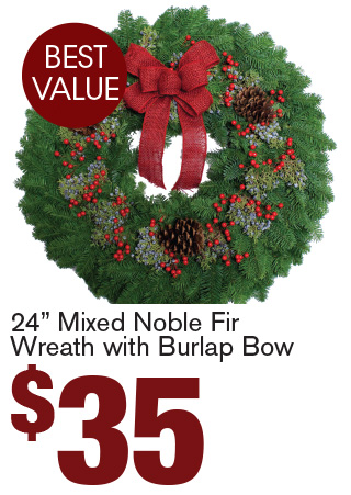"24"" Mixed Noble Fir Wreath with Burlap Bow $35"